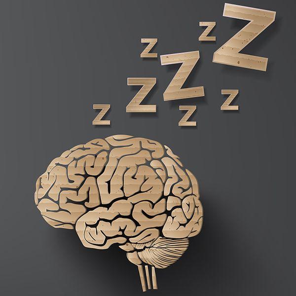 agy és alvás